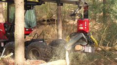 Tree cutter : Timber Logging Havester : Skidder, Version 2 Stock Footage