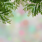 Stock Illustration of fresh green leaves