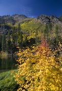 fall colors yellow mountain lake  leavenworth washington - stock photo