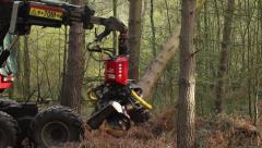Tree cutter : Timber Logging Havester : Skidder, Version 3 Stock Footage