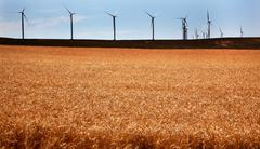 wind turbines wheatfields palouse washington - stock photo