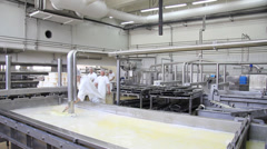 Making cheese in dairy factory - stock footage