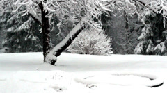 Snow is falling down so fast Stock Footage