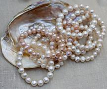 mother of pearl necklace with original oyster for sale by jeweler - stock photo