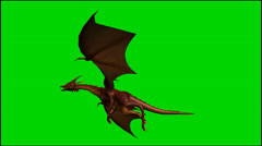 Dragon in flight - isolated green screen footage - Clip 3 Stock Footage