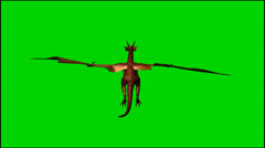 Dragon in flight - isolated green screen footage - Clip 5 Stock Footage