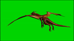 Dragon in flight - isolated green screen footage - Clip 7 Stock Footage