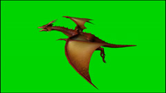 Dragon in flight - isolated green screen footage - Clip 9 Stock Footage