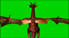 Dragon in flight - seperated on  green screen  Stock Footage