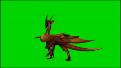 Dragon walk - isolated green screen footage Stock Footage