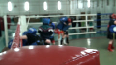 Engaging in of children the Thai boxing, working off shots Stock Footage