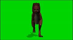 Dinosaur Tyrannosaurus T-Rex run - isolated green screen footage clip 1 Stock Footage
