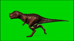 Dinosaur Tyrannosaurus T-Rex run - isolated green screen footage clip 3 Stock Footage