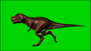 Stock Video Footage of Dinosaur Tyrannosaurus T-Rex run - isolated green screen footage clip 3