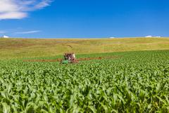 Maize Corn Crop Tractor Driver . Stock Photos