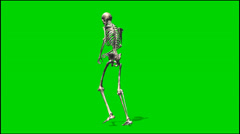 skeleton walk rage - isolated green screen footage 2 - stock footage