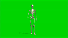 Skeleton goes - isolated green screen footage Stock Footage