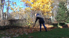 Gardener girl rake golden leaves under tree. Autumn works Stock Footage