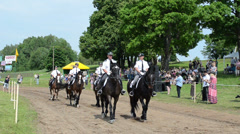 Ranger police riders show in city horse festival and people Stock Footage