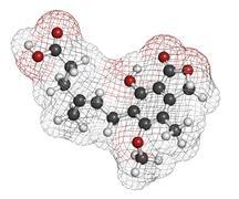 Mycophenolate (mycophenolic acid) immunosuppressive drug, chemical structure. Stock Illustration