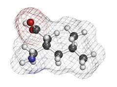 Pregabalin epilepsy and fibromyalgia drug, chemical structure. Stock Illustration
