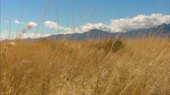 Desert Valley Grassland Stock Footage