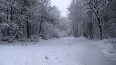 Road sign in snowstorm, forest Stock Footage