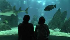 Lisbon Oceanarium (Oceanário de Lisboa) Parque das Nacoes, Lisbon, Portugal. Stock Footage