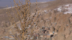 Iranian village behind dry plant Stock Footage