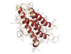 Stock Illustration of erythropoietin (epo, epoetin) protein hormone. stimulates production of red b