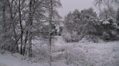 Snowy forest & heath landscape - vehicle shot Stock Footage