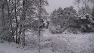Stock Video Footage of snowy forest & heath landscape - vehicle shot