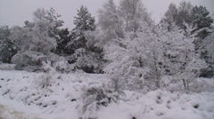 Snowy forest & heath landscape - vehicle shot Stock Footage
