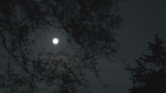 Full moon rising through the tree and clouds Stock Footage