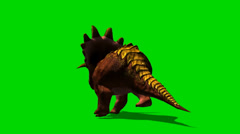 Triceratops dinosaur run - isloatet green screen footage Stock Footage