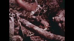 Vietnam War - Dag To Battle - US soldiers Working Frontline 04 Stock Footage