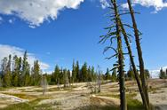 Stock Photo of yellowstone landscape