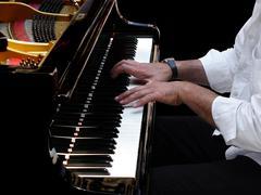Pianisti soittaa jazzia Kuvituskuvat