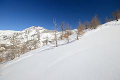 Quiet alpine scene in winter Stock Photos
