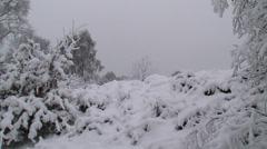 Snowy heath landscape, grey sky Stock Footage