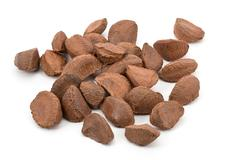 brazil nuts - stock photo