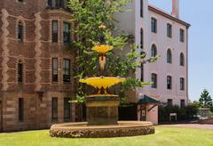 robert brough fountain sydney hospital - stock photo