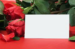 Roses and white card with a place for a congratulatory text Stock Photos