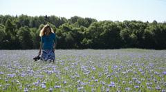 Elegant happy woman walk blue cornflowers farmland field Stock Footage