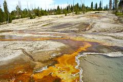 toxic landscape of yellowstone national park - stock photo