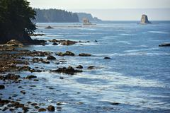 salish sea rocky coast - stock photo