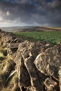 Dry stone wall view Stock Photos
