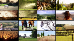 Agriculture. People working in countryside, collage Stock Footage