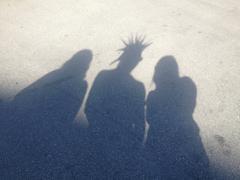 Spike Shadows - stock photo