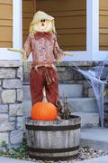 halloween scarecrow - stock photo